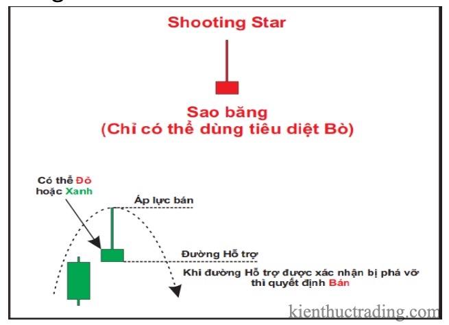 Shooting-Star.jpg