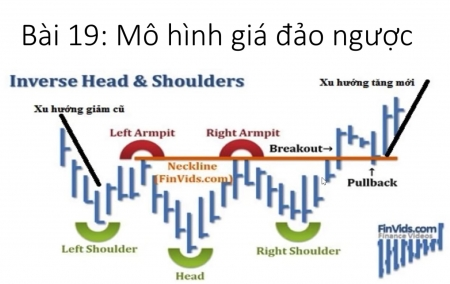 Bài 19: Mô hình Vai Đầu Vai và Các mô hình giá đảo ngược thông dụng